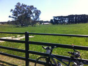 Kersbrook Vineyard Adelaide