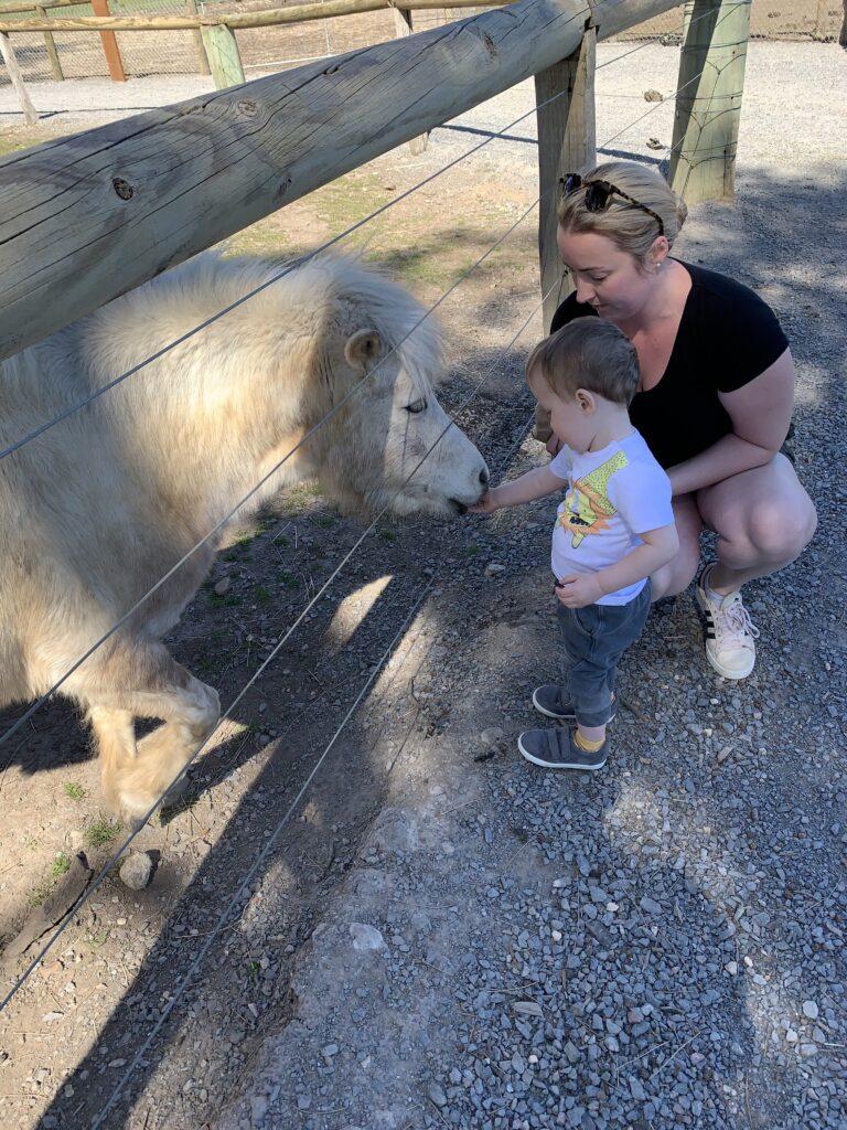 LoveNiamh: Oakvale Wildlife Park Visit